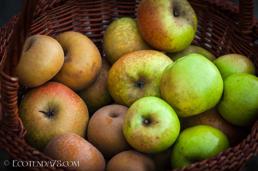 As Primeiras Mazás Ecolóxicas de Naraío