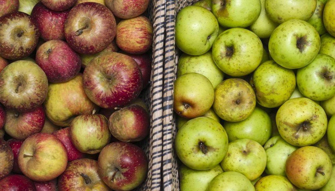 As últimas mazás eco-locais do ano